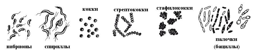 hello_html_m9549414.jpg