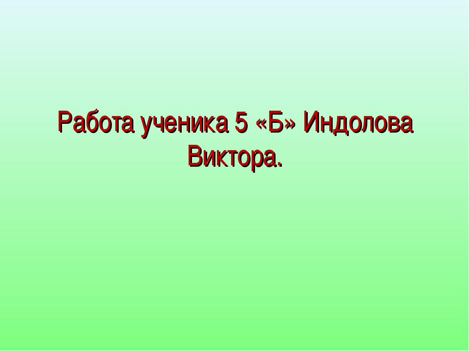 Работа ученика 5 «Б» Индолова Виктора.