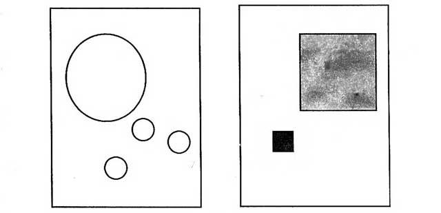 рис-1-закон-равновесия