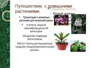 Путешествие с домашними растениями. Презентация о комнатных растениях для нач