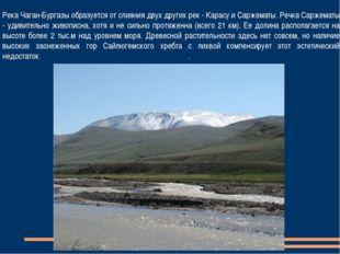 Река Чаган-Бургазы образуется от слияния двух других рек - Карасу и Саржематы