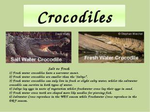 Crocodiles Salt vs Fresh 1) Fresh water crocodiles have a narrower snout. 2)