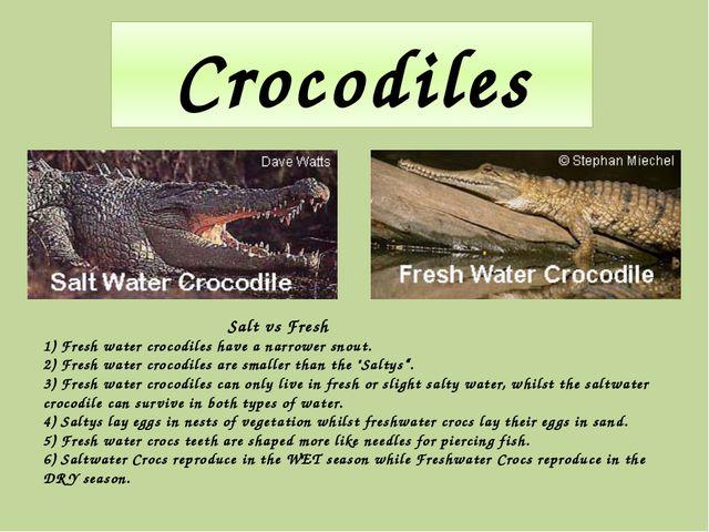 Crocodiles Salt vs Fresh 1) Fresh water crocodiles have a narrower snout. 2)...