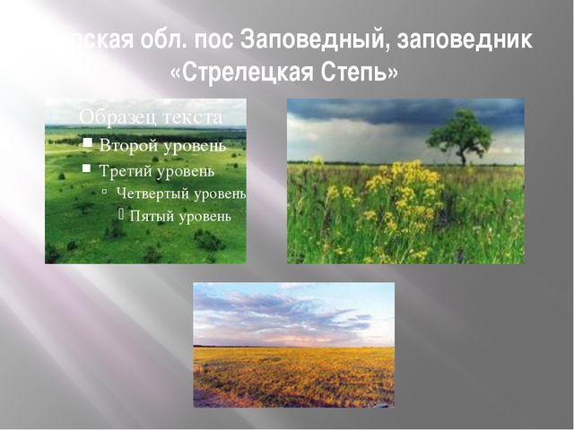 Курская обл. пос Заповедный, заповедник «Стрелецкая Степь»