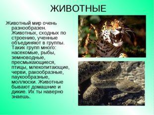 ЖИВОТНЫЕ Животный мир очень разнообразен. Животных, сходных по строению, учен
