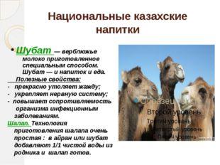 Национальные казахские напитки Шубат — верблюжье молоко приготовленное специа