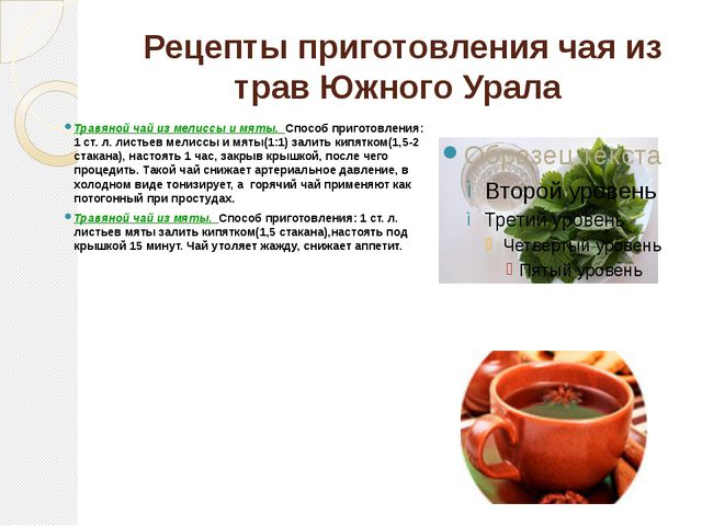 Рецепты приготовления чая из трав Южного Урала Травяной чай из мелиссы и мят...