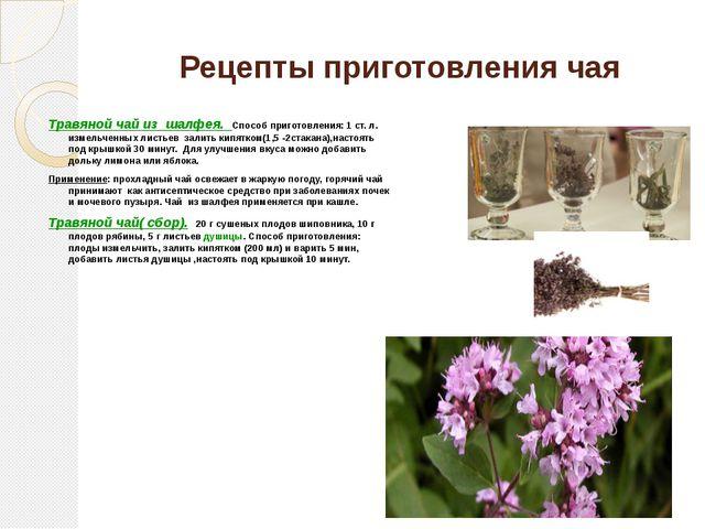 Рецепты приготовления чая Травяной чай из шалфея. Способ приготовления: 1 ст....