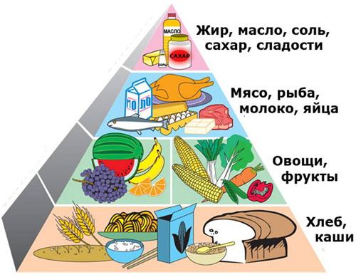 http://www.bediva.ru/wp-content/uploads/2013/04/pishhevaya-piramida.jpg