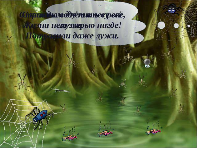 С каждым днём в лесу всё хуже, Потравили даже лужи. Страшно воду пить в реке...