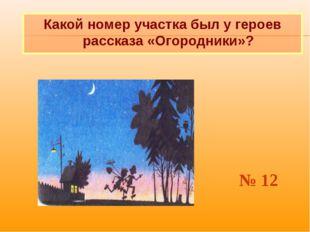 Какой номер участка был у героев рассказа «Огородники»? № 12