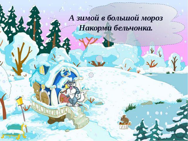 А зимой в большой мороз Накорми бельчонка.