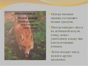 Основу питания лисицы составляют мелкие грызуны. Иногда нападает лиса и на де