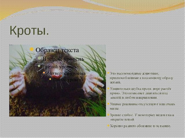 Кроты. Это насекомоядные животные, приспособленные к подземному образу жизни....