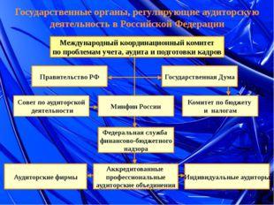 Государственные органы, регулирующие аудиторскую деятельность в Российской Фе