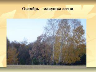 Октябрь – макушка осени