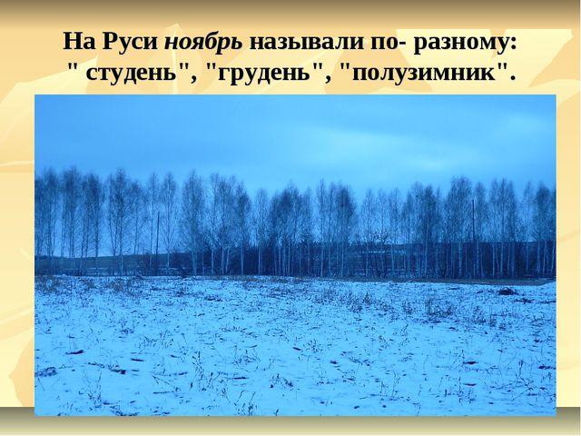 """На Руси ноябрь называли по- разному: """" студень"""", """"грудень"""", """"полузимник""""."""