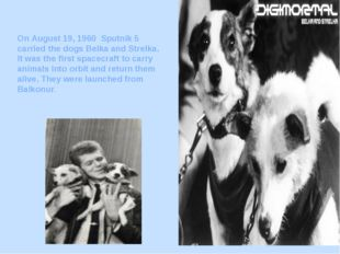 On August 19, 1960 Sputnik 5 carried the dogs Belka and Strelka. It was the f