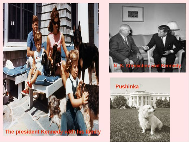 The president Kennedy with his family Pushinka N .S. Khruschev and Kennedy