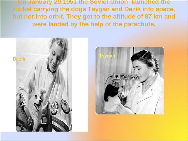 On January 29,1951 the Soviet Union launched the rocket carrying the dogs Tsy...