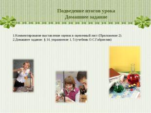 Подведение итогов урока Домашнее задание 1.Комментирование выставление оценок