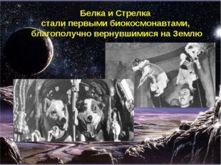 Белка и Стрелка стали первыми биокосмонавтами, благополучно вернувшимися на З