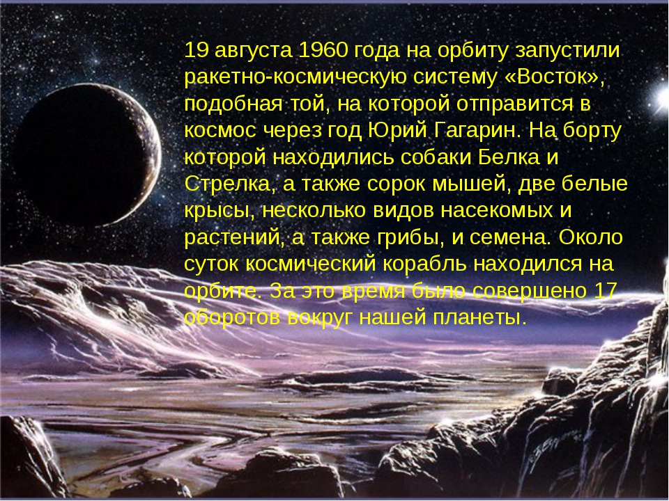19 августа 1960 года на орбиту запустили ракетно-космическую систему «Восток»...