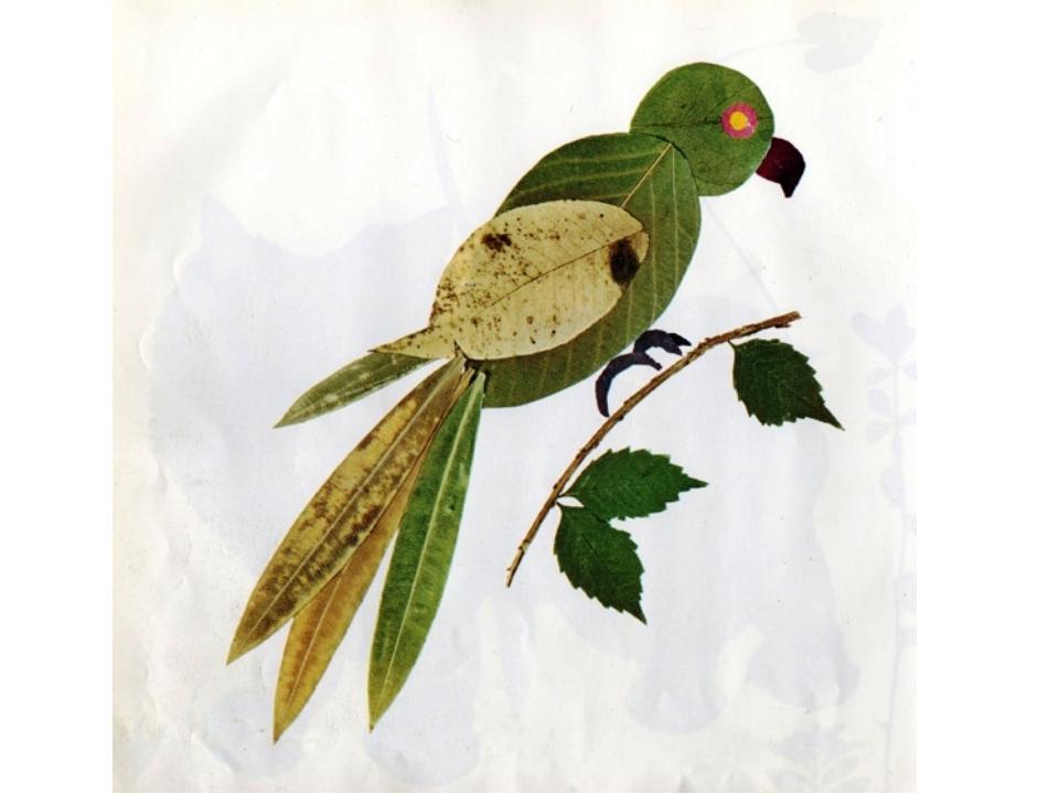 Поделки из листьев и из гербария 360
