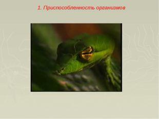 1. Приспособленность организмов