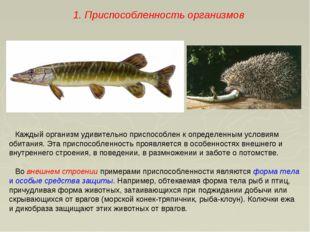 Каждый организм удивительно приспособлен к определенным условиям обитания. Эт