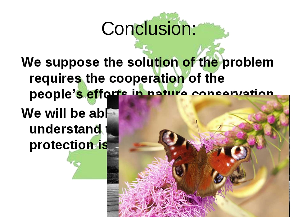 Conclusion: We suppose the solution of the problem requires the cooperation o...