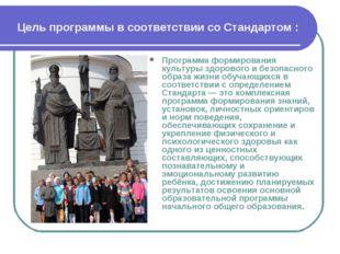 Цель программы в соответствии со Стандартом : Программа формирования культуры