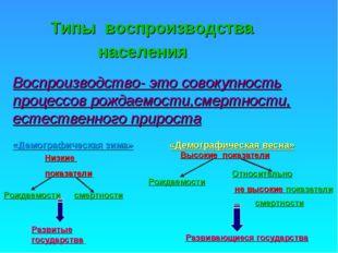 Типы воспроизводства населения Воспроизводство- это совокупность процессов ро