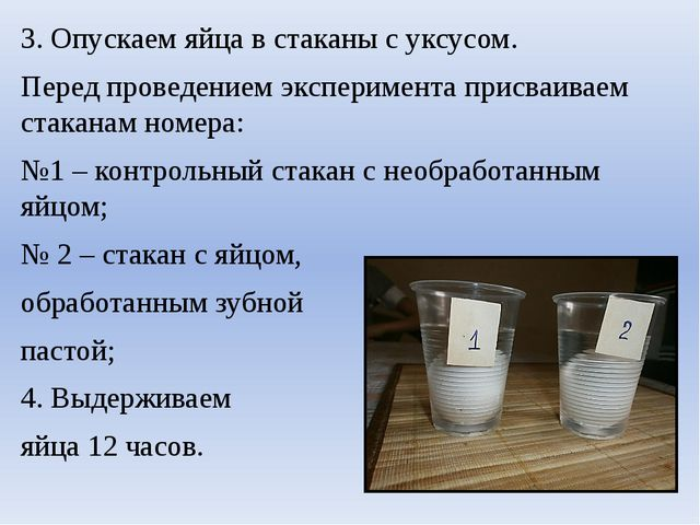3. Опускаем яйца в стаканы с уксусом. Перед проведением эксперимента присваив...