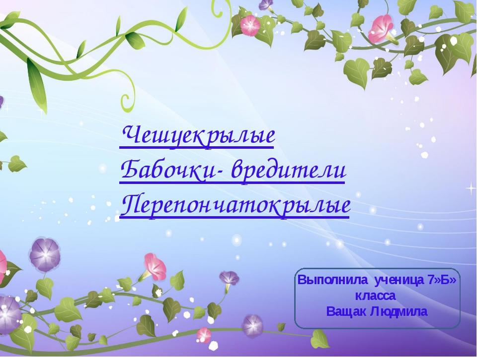 Чешуекрылые Бабочки- вредители Перепончатокрылые Выполнила ученица 7»Б» класс...
