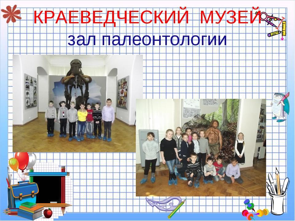 КРАЕВЕДЧЕСКИЙ МУЗЕЙ зал палеонтологии