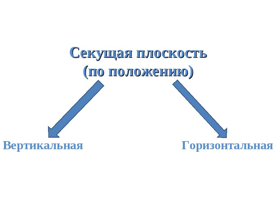 Секущая плоскость (по положению) Вертикальная Горизонтальная