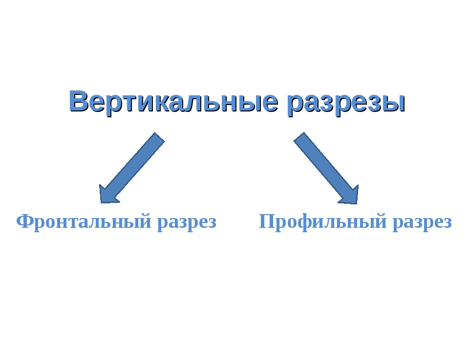 Вертикальные разрезы Фронтальный разрез Профильный разрез