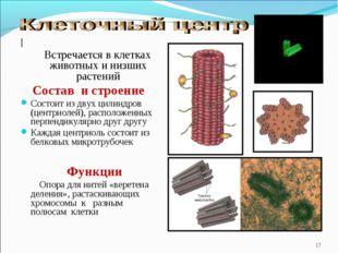 | Встречается в клетках животных и низших растений Состав и строение Состоит