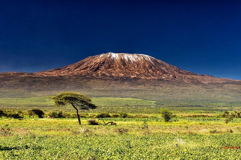 Вулкан Килиманджаро. Танзания. Африка. Фото