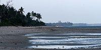 Saadani beach.jpg
