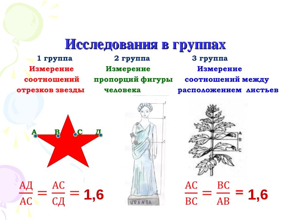 Исследования в группах 1,6 1,6