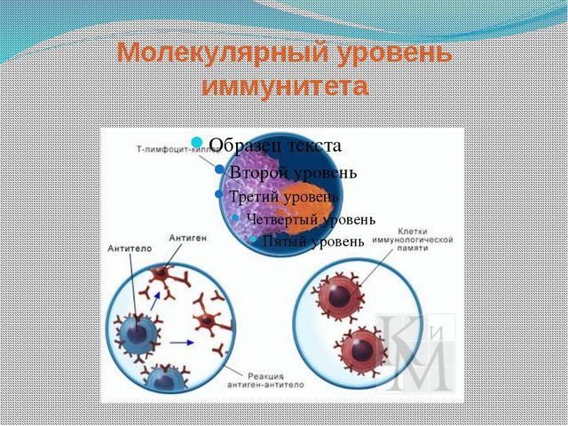 Молекулярный уровень иммунитета