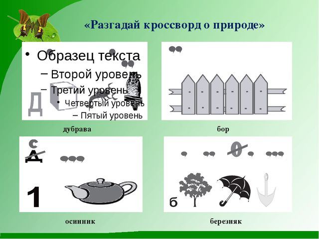 «Разгадай кроссворд о природе» дубрава бор осинник березняк