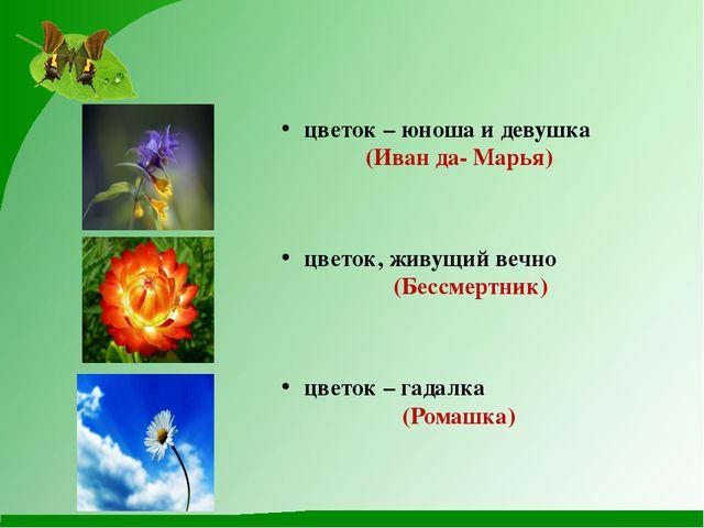 цветок – юноша и девушка (Иван да- Марья) цветок, живущий вечно (Бессмертник...