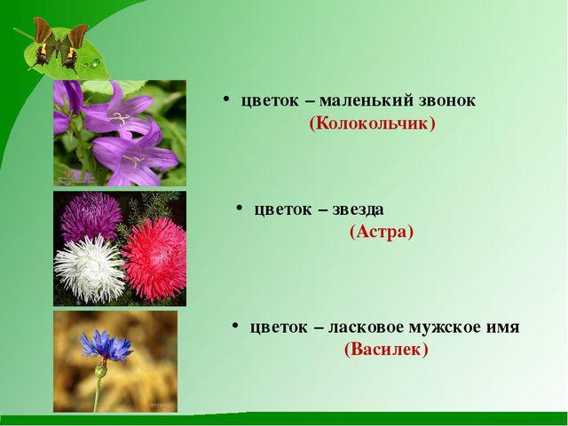 цветок – маленький звонок (Колокольчик) цветок – звезда (Астра) цветок – лас...