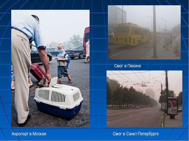 Смог в Санкт-Петербурге Смог в Пекине Аэропорт в Москве