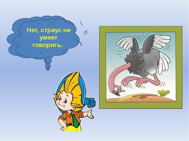 Может ли страус назвать себя птицей? Нет, страус не умеет говорить.