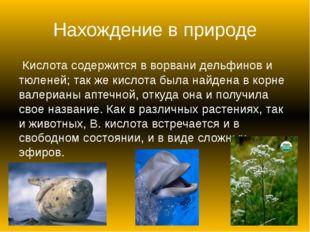 Нахождение в природе Кислота содержится в ворвани дельфинов и тюленей; так ж