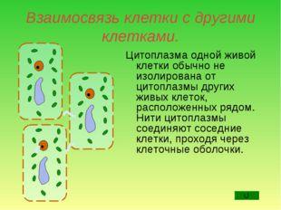 Взаимосвязь клетки с другими клетками. Цитоплазма одной живой клетки обычно н